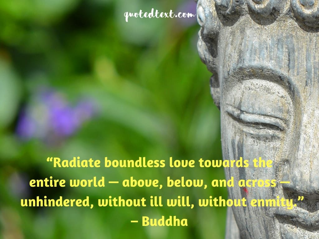 buddha quotes on boundless love