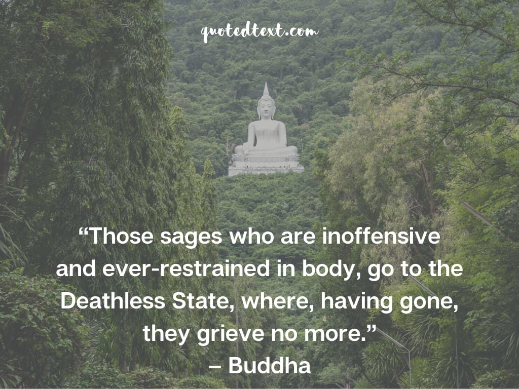 buddha quotes on deathless state