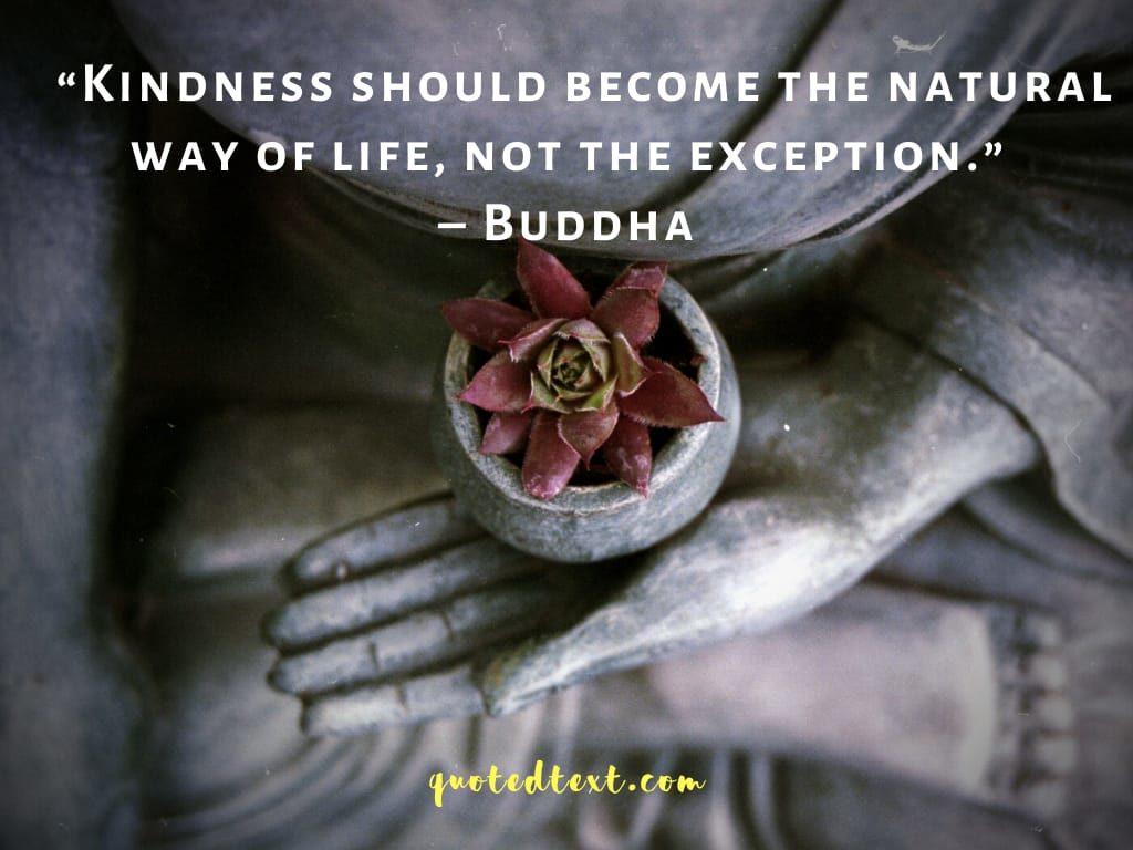 buddha quotes on kindness