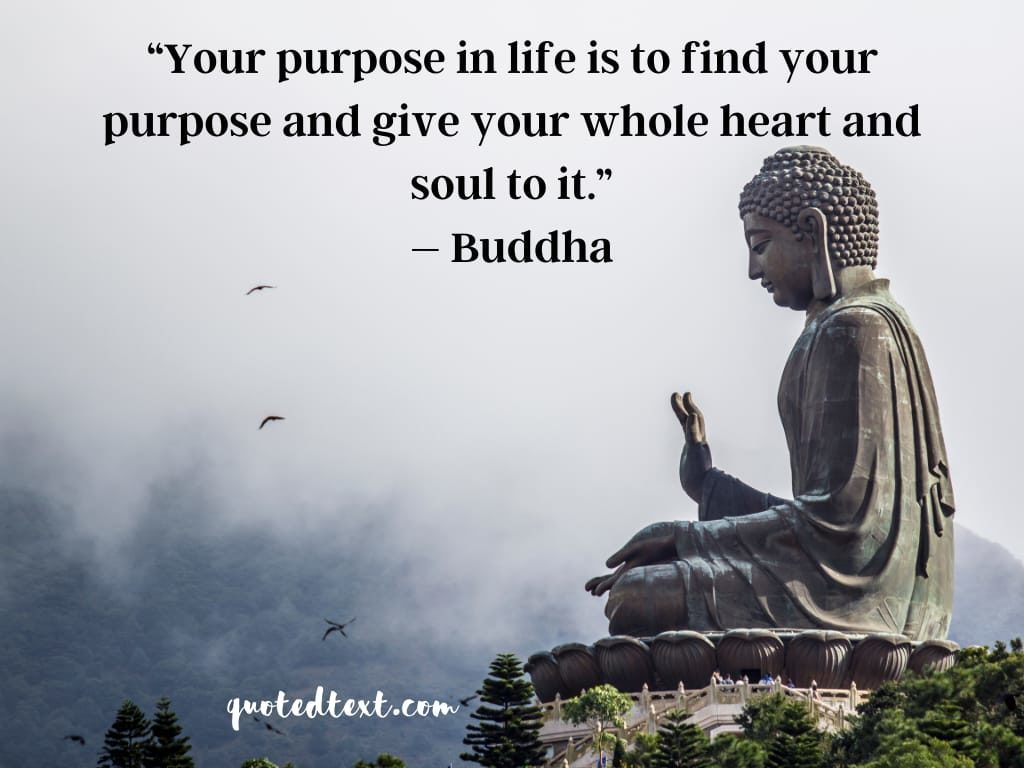 purpous of life quotes
