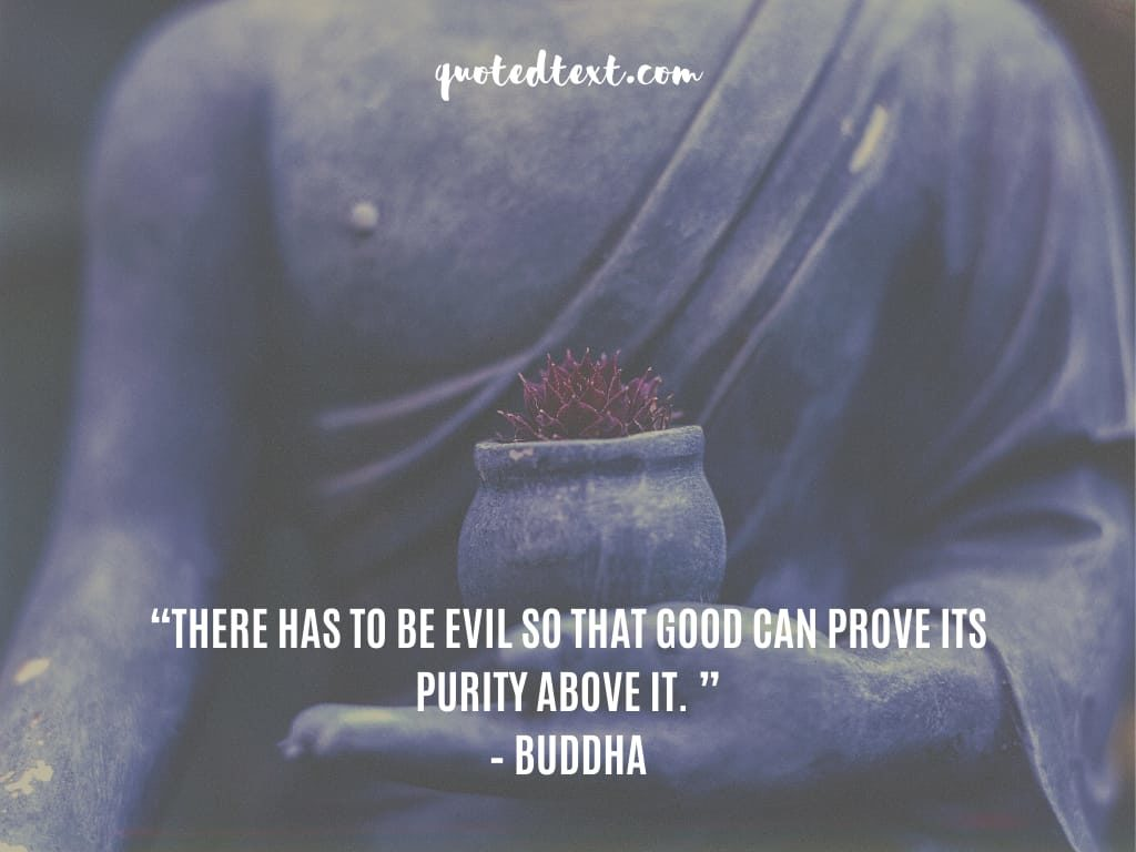 buddha quotes on purity