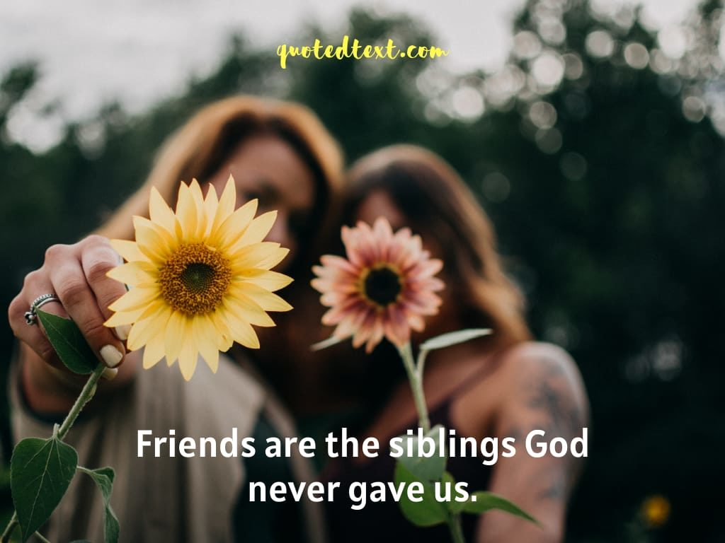 friends are siblings quotes