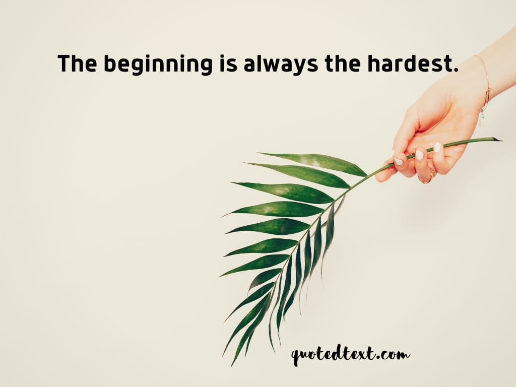 motivational status on beginning