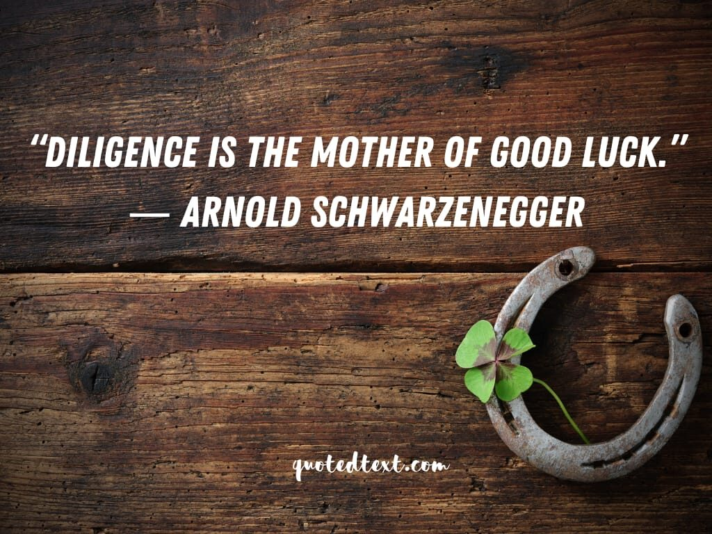 Arnold Schwarzenegger quotes on diligence