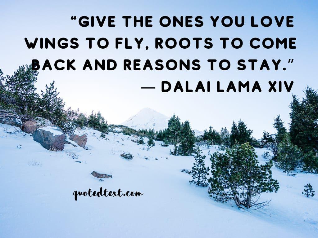 love quotes dalai lama