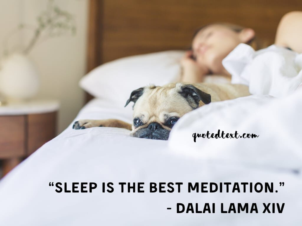 meditation dalai lama quotes