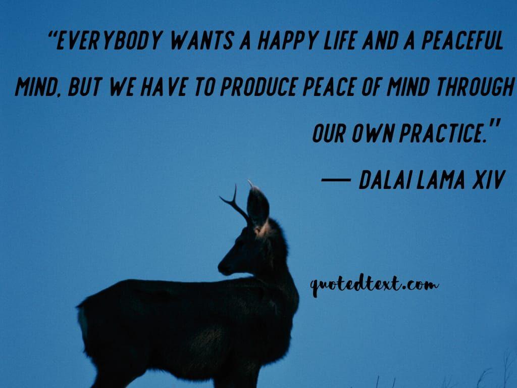 dalai lama quotes on happy life