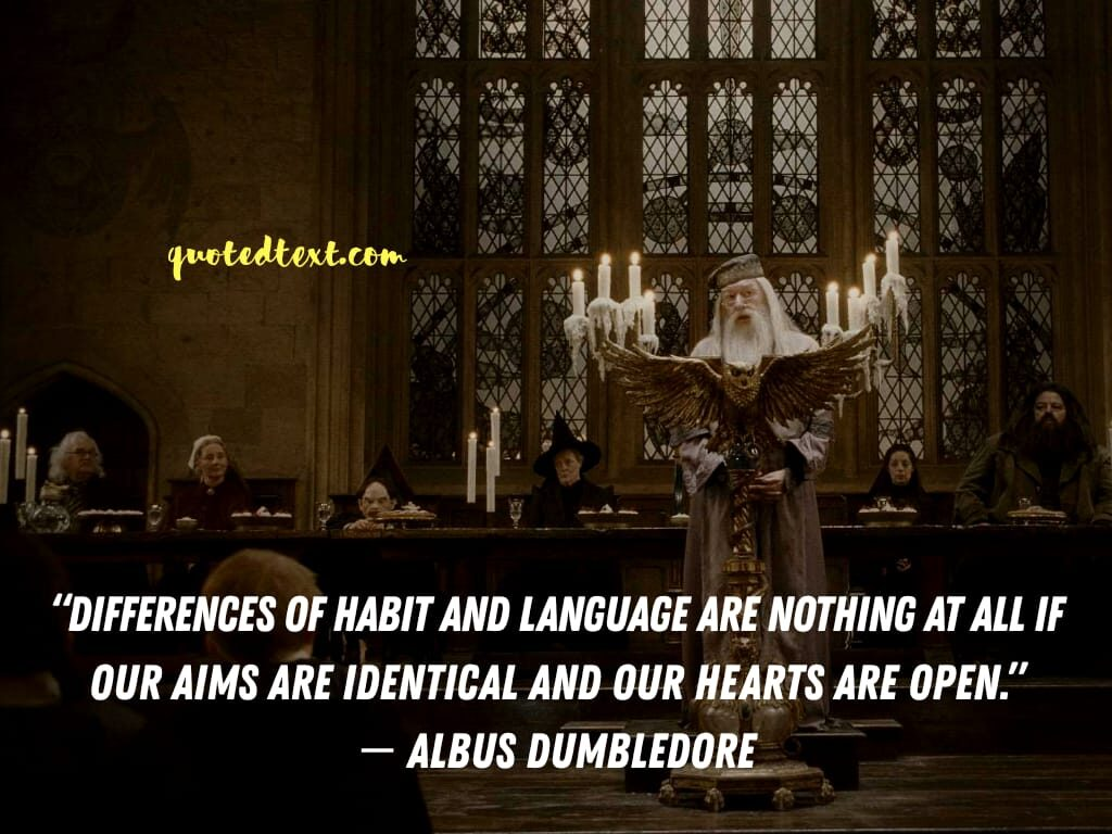 harry potter quotes by albus dumbledore on differences