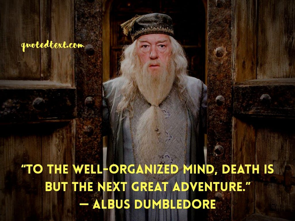 harry potter quotes by albus dumbledore on mind