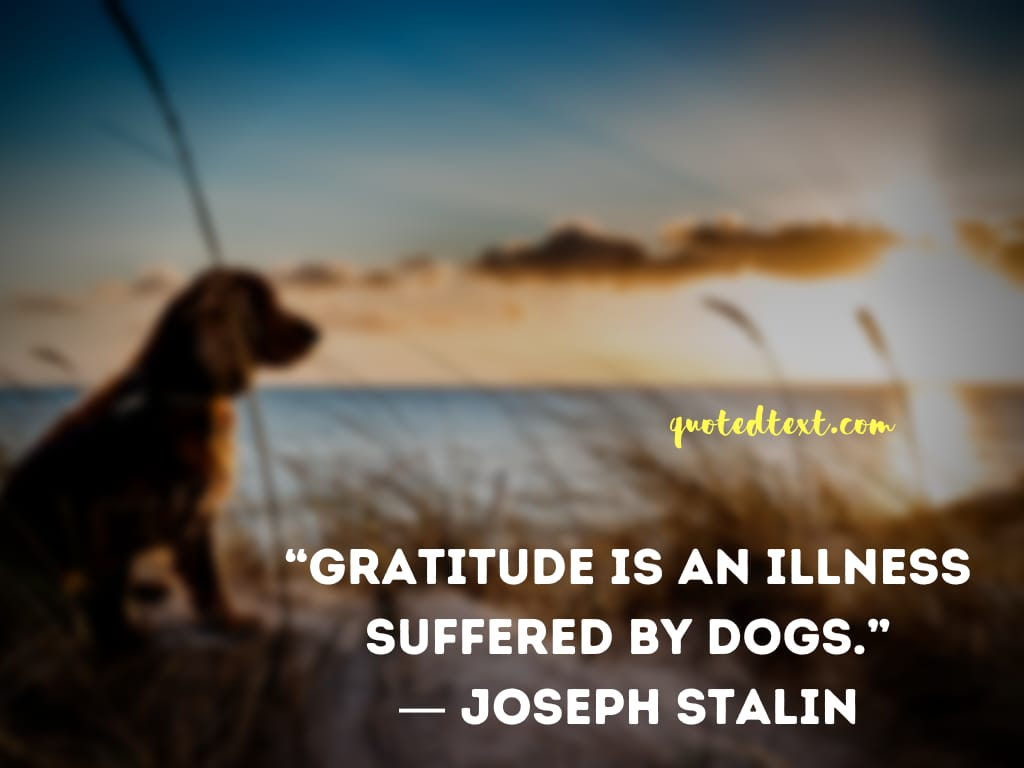 Joseph Stalin quotes on gratitude