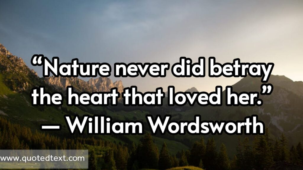 William Wordsworth quotes on love and nature