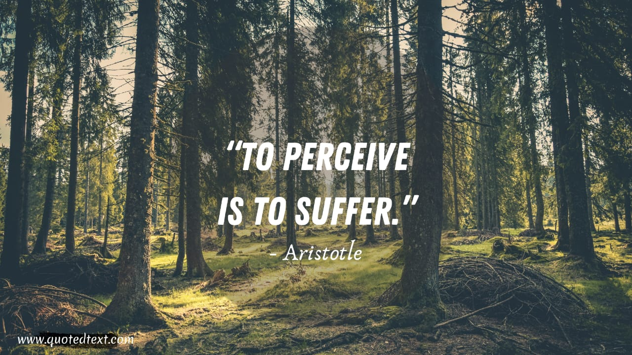 Aristotle quotes on suffering