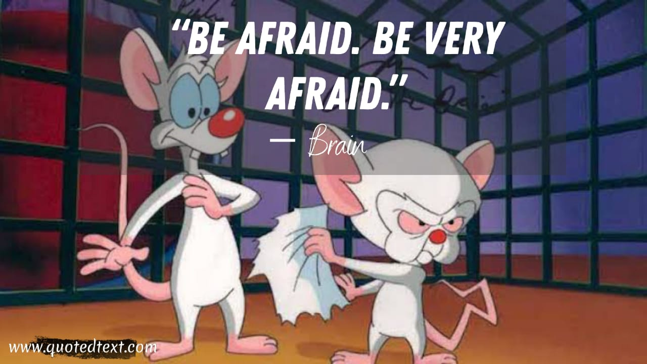 Pinky and the Brain quotes on be afraid