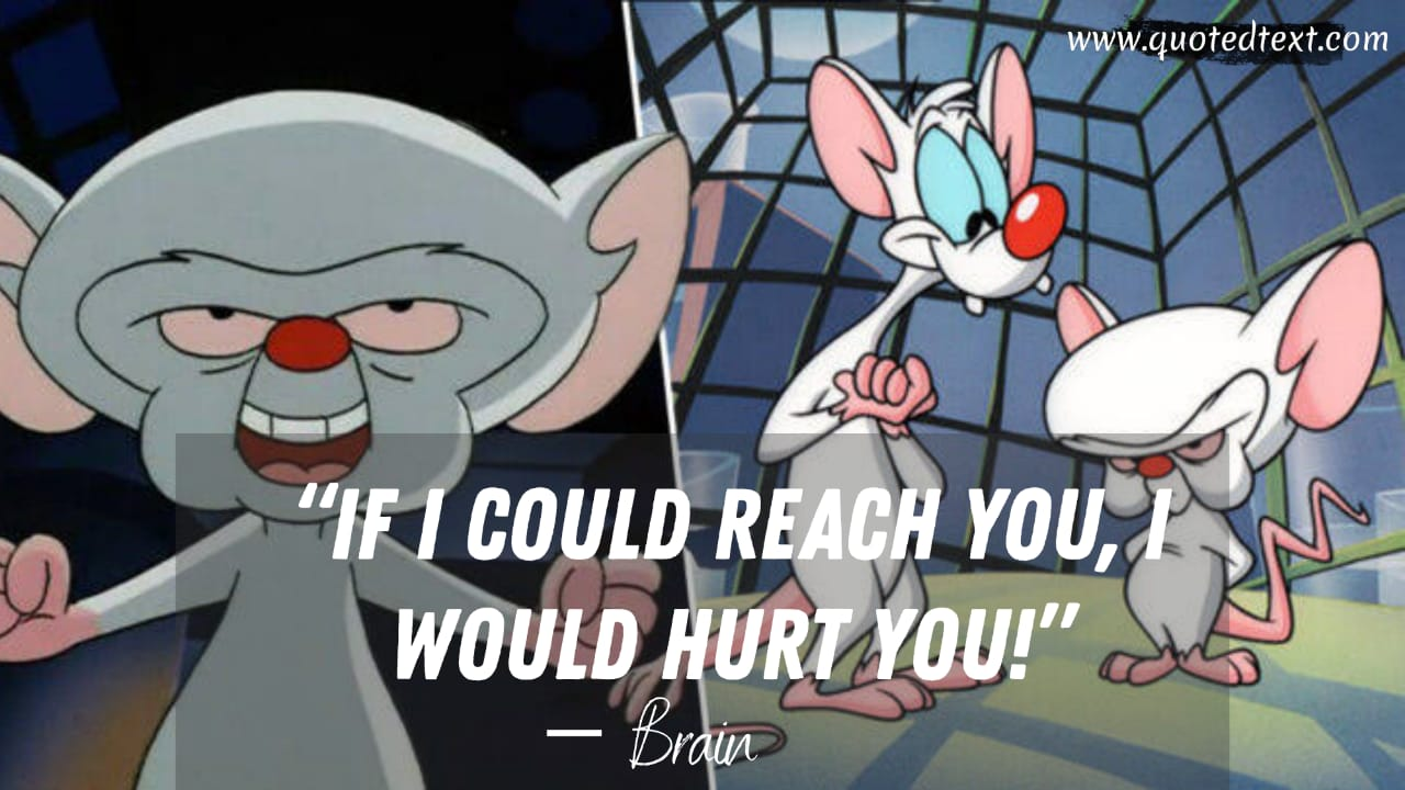 Pinky and the Brain quotes by brain
