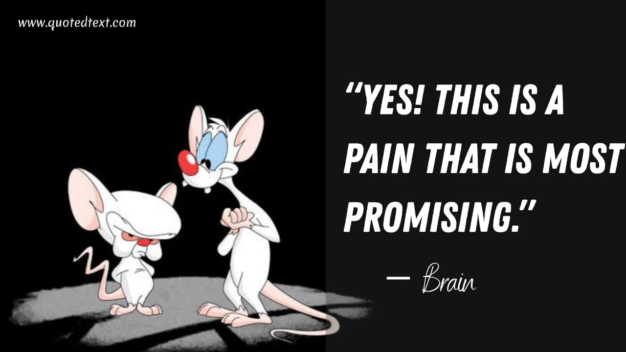 Pinky and the Brain quotes on pain