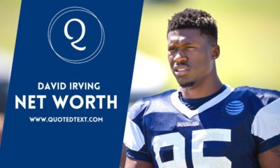 David Irving net worth