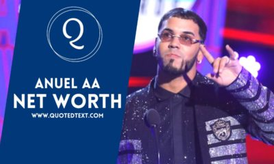 Anuel AA net worth