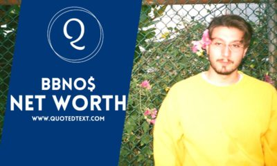 Bbno$ net worth