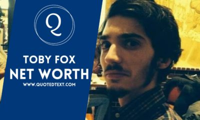 Toby Fox net worth