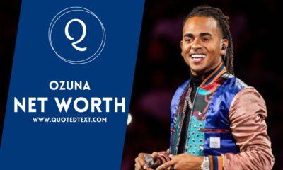 Ozuna Net Worth